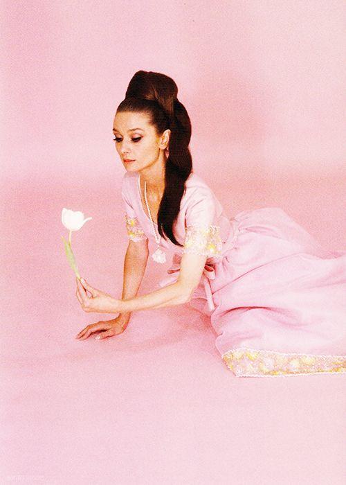 Audrey Hepburn rosa