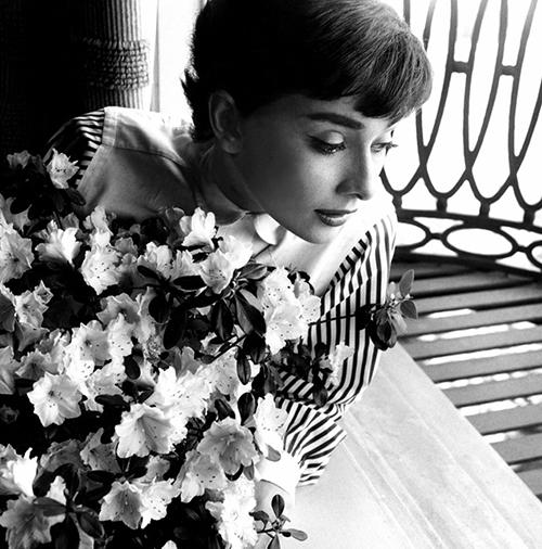 Aydrey flores