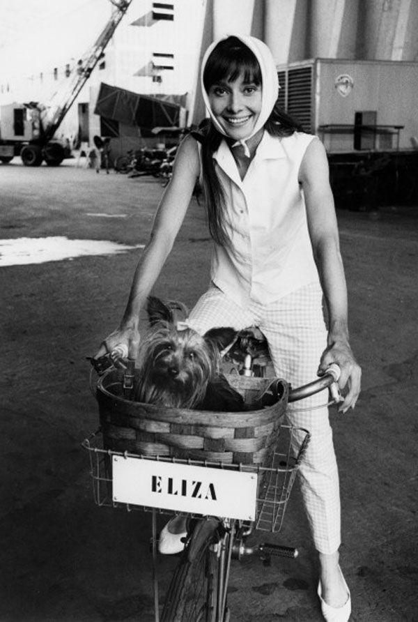 """My Fair Lady""Audrey HepburnWarner Bros. 1964 © 1978 Bob Willoughby"