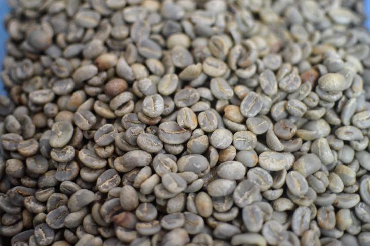 café antes de la tostadora